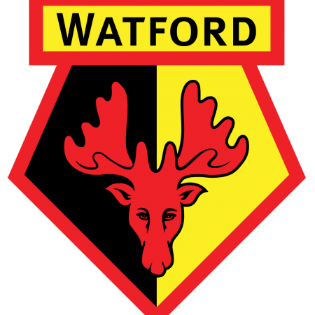 Watford FC launches new inclusive website with Recite Me assistive technology