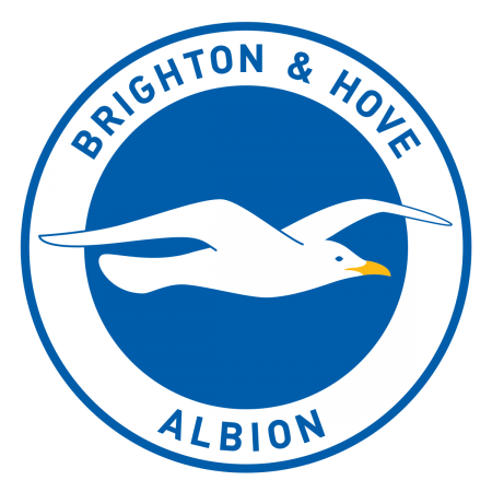 Brighton & Hove Albion FC seeks trade mark protection for 'Albion' – but why?